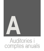 auditories-i-icomptes-anuals
