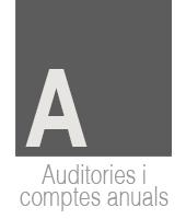 auditories-i-icomptes-anuals